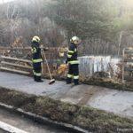 FFFW 2019.03.10 Verkehrsunfall 015